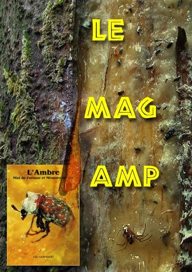 Le Mag Ambre Miel Paléontologique